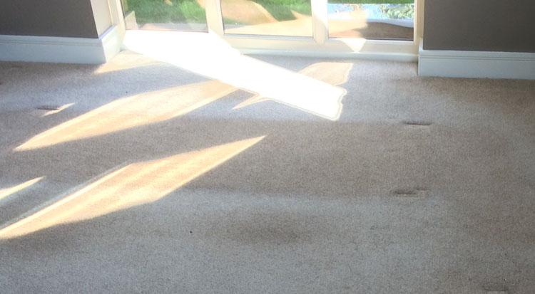 Sun Damaged Carpet Repairs